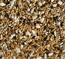 AS305 1KG - Soaking Seed Mix