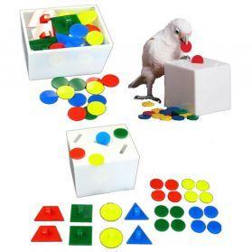 Teach Bank Puzzle Toy and Teach Box - Medium