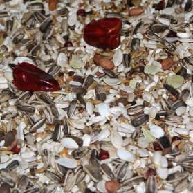 AS10 Large Parrot Seed Mix - 15kg