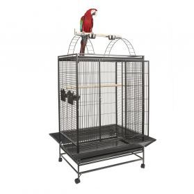 Rainforest Belize Large Cage