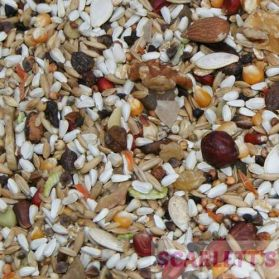 Scarletts AS30 No Peanut No Sunflower Seed Mix15kg - Exclusive