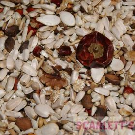 AS5 Amazon & African Grey Parrot Seed - 15kg