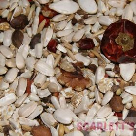 AS5 Amazon & African Grey Parrot Seed - 5kg