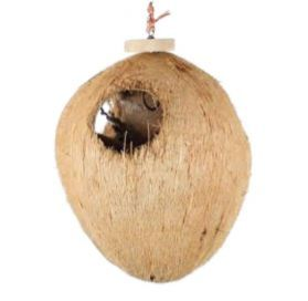 Coco Full Moon Large Natural Foraging Toy