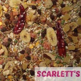 Tidymix Parrot Diet - High Quality Seed Blend 1Kg