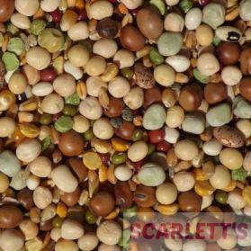 Tidymix Pulse & Rice Soaking Mix for Parrots - 2Kg