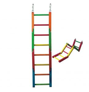 Bendy Ladder