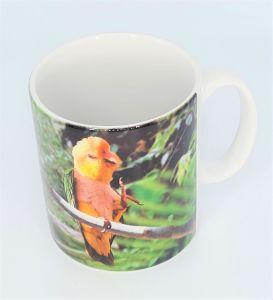 Gift Mug Caique Parrot Design