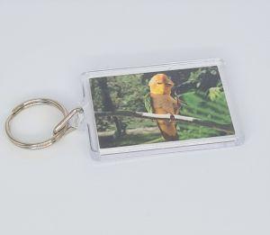 Keyring Caique Parrot