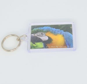 Keyring Blue & Gold Macaw