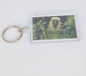 Keyring Amazon Parrot