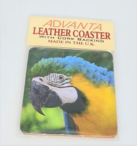 Coaster Blue & Gold Macaw