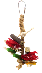 Firedancer Extra Small Bird Toy
