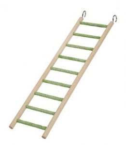 Small 9 Step Bird Ladder