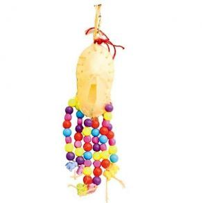 Bone Shoe Fun Small Bird Toy