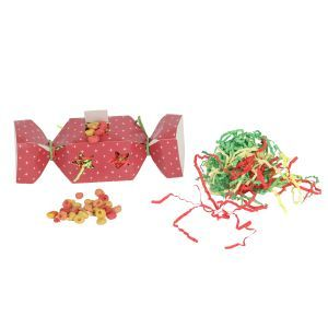 Christmas Cracker Bird Toy