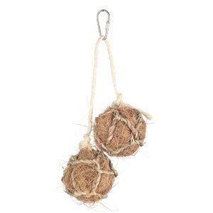 Coconut Duo Hanging Bird Toy