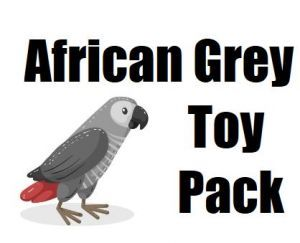 African Grey Toy Pack