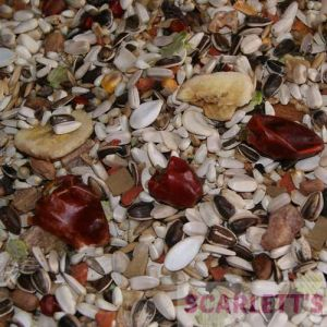 AS20 LOW SUNFLOWER PARROT SEED - 2.5KG