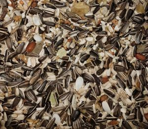 AS25 Large Macaw Seed Mix 12.5kg