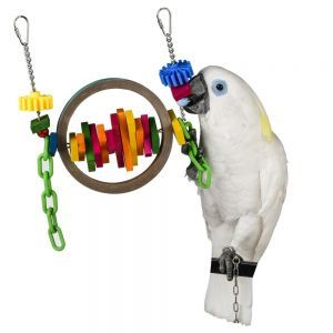 Busy Beak Large Bird Toy