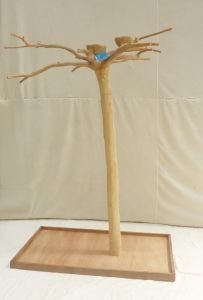 JAVA TREE - MEDIUM - NATURAL HARDWOOD PARROT PLAYSTAND BS40271