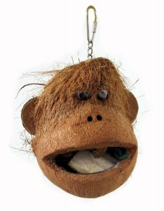 Foraging Coco Monkey Bird Toy