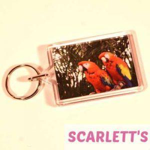 Keyring Scarlet Macaws
