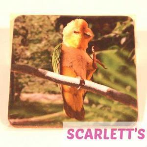 Coaster Caique Parrot Design