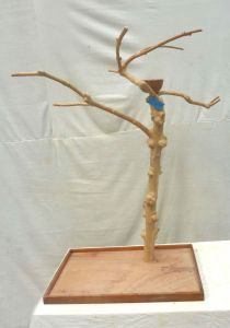 JAVA TREE MIDI MEDIUM BIRD STAND 10090