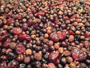 Tidymix Berry Mix Parrot Treat - 250g