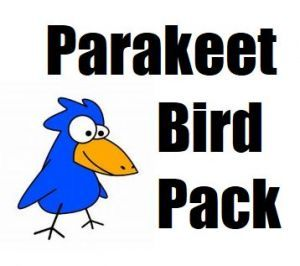 Parakeet Toy Pack