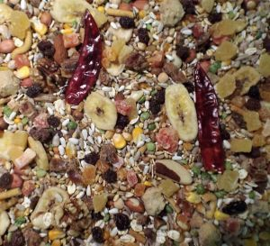 Tidymix Parrot Diet - High Quality Seed Blend 2Kg