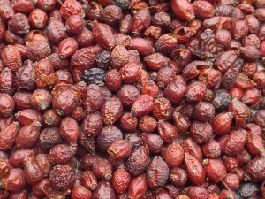 Tidymix Whole Rosehips Parrot Treat - 250g
