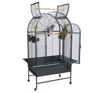 Rainforest Santa Marta II Open Top Bird Cage