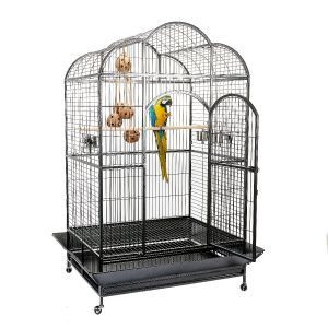 Liberta Atlantis Dome Top Large Parrot Cage