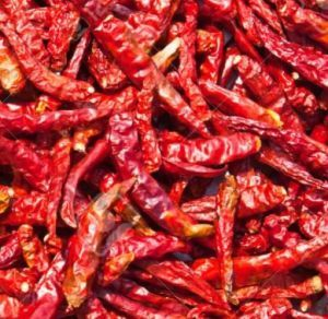Scarletts Large Dried Chillies 100g