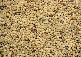 Budgie Supreme Budgie Seed 20kg