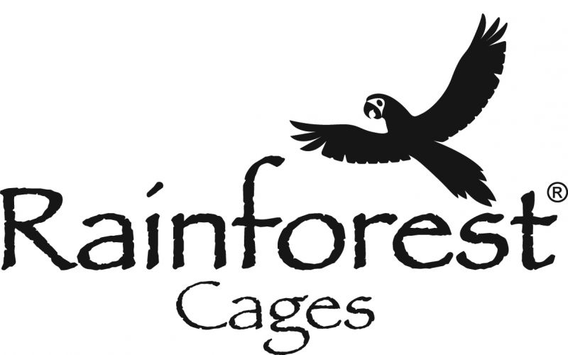 Where To Keep Parrot Cage & Other Questions Answered
