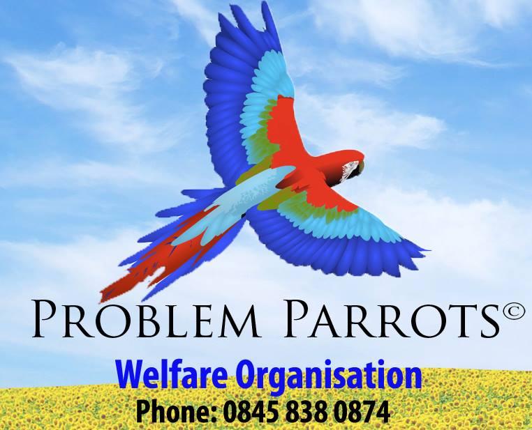 Problem Parrots