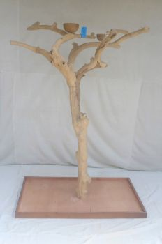 JAVA TREE - LARGE - NATURAL HARDWOOD PARROT PLAYSTAND BL60324
