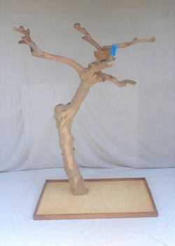 JAVA TREE - LARGE - NATURAL HARDWOOD PARROT PLAYSTAND BL60342