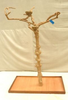 JAVA TREE - SMALL - NATURAL HARDWOOD PARROT PLAYSTAND BS40203