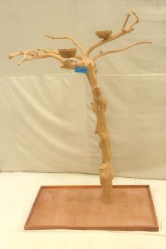 JAVA TREE - SMALL - NATURAL HARDWOOD PARROT PLAYSTAND BS40232