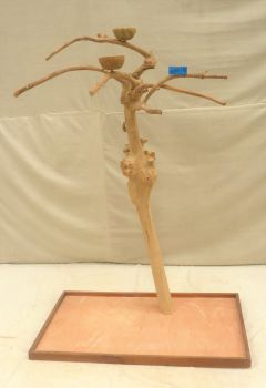 JAVA TREE - SMALL- NATURAL HARDWOOD PARROT PLAYSTAND BS40233