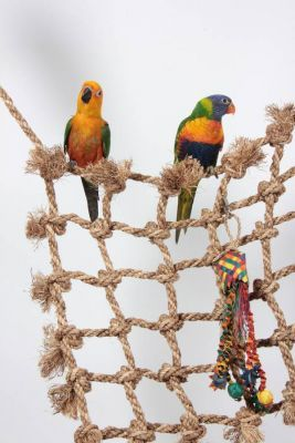 Small Bird Rope Cargo Climbing Net