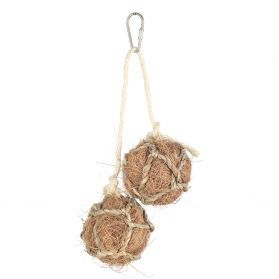 Coconut Duo Hanging Bird Toy