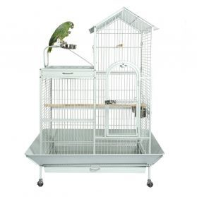 Liberta Angel Medium Bird Cage With Play Area
