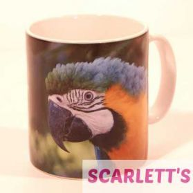 Mug Blue and Gold Macaw