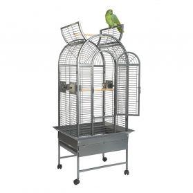 Rainforest Ecuador II Medium Bird Cage